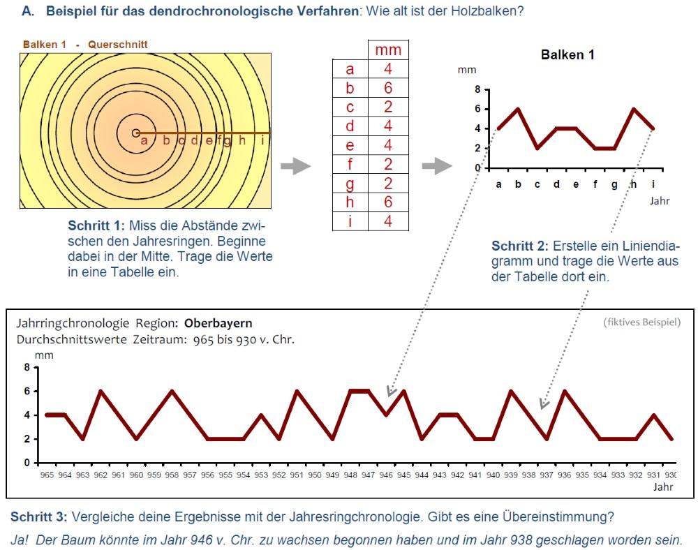 Dendrochronologisches Verfahren